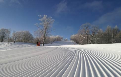 岐阜 スキー場